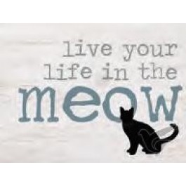 Live you life in the meow
