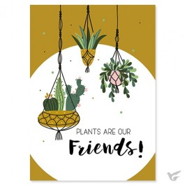 Plants are our friends