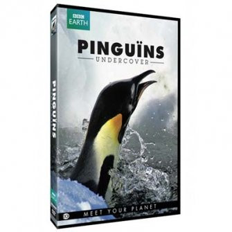 Pinguins undercover