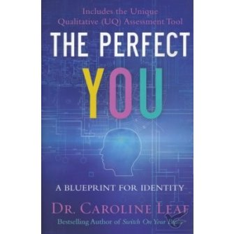 The Perfect You: A Blueprint for Identit