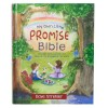 My own promise bible