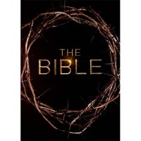 The Bible (EO-TV-serie / 10-delig / 4-DVD-box)