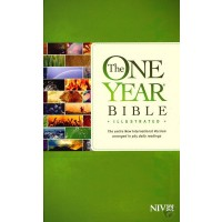 One Year Bible Illustrated