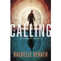 The Calling (in the seers #2)