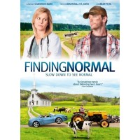 Finding normal :  , 8717185537932