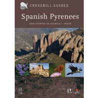 Pyrenees and steppes of huesca