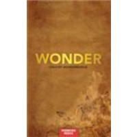 Wonderboek brown