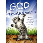 Poster 50x70 God is groot